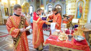В Михаило-Архангельском соборе впервые совершили миссионерскую литургию